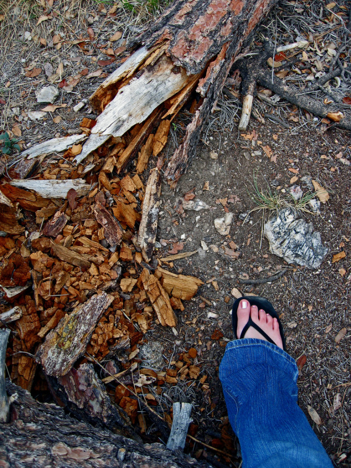 5. They're wearing flip-flops on the hiking trail.