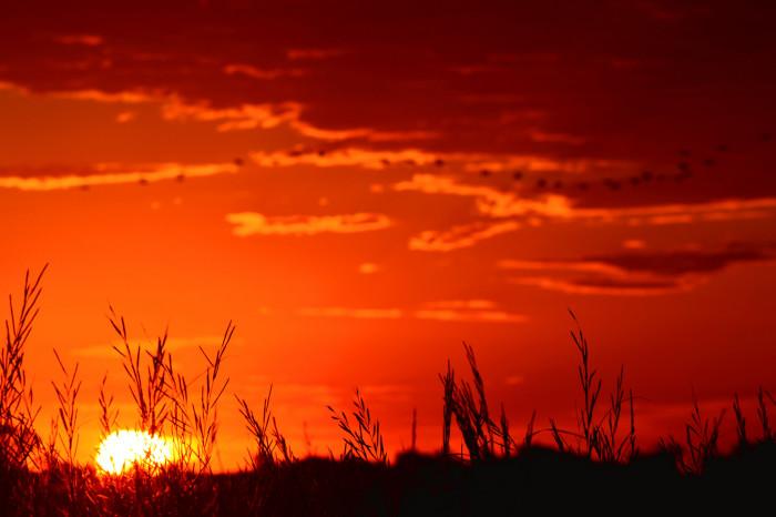 1. Waking up early to catch the glorious Kansas sunrise.