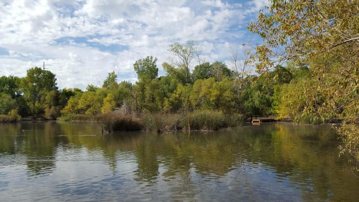 Enjoy a picnic dinner at Beus Pond.