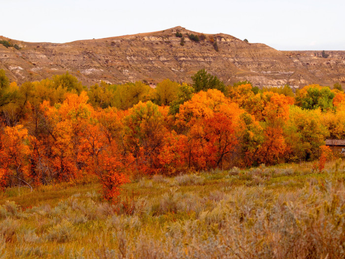 12. Beautiful autumn colors of the badlands in the southwest corner of the state