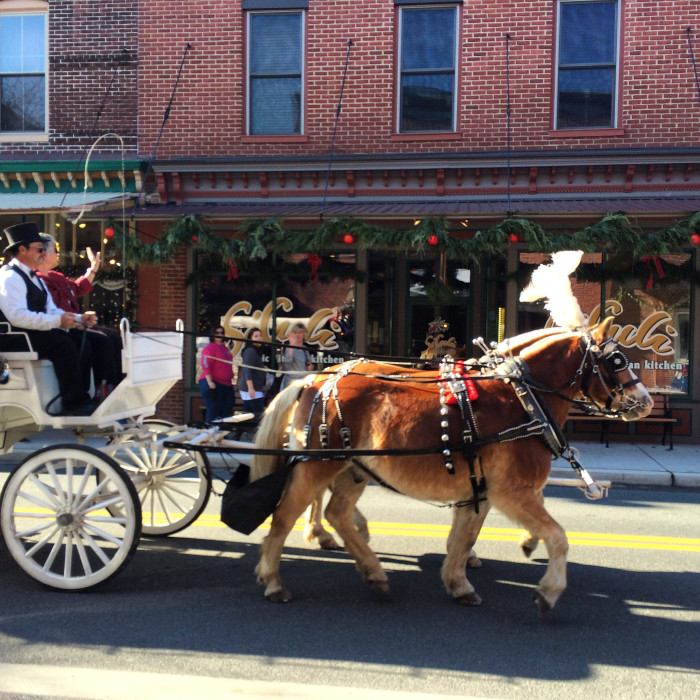 And those carriage rides are made extra festive during the holiday season.