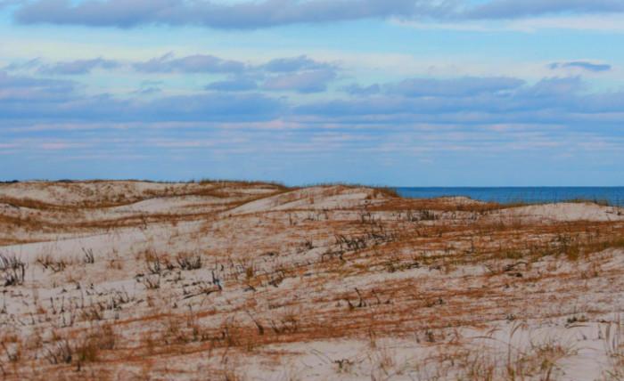 2. Island Beach State Park