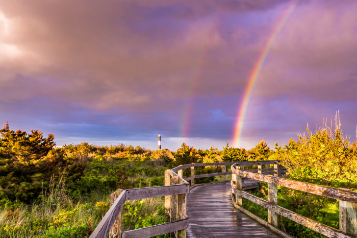 4. Take a break from the fast track city life and enjoy the more serene area of Fire Island.