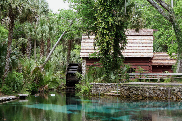 1. Visit one of Florida's famous natural springs.