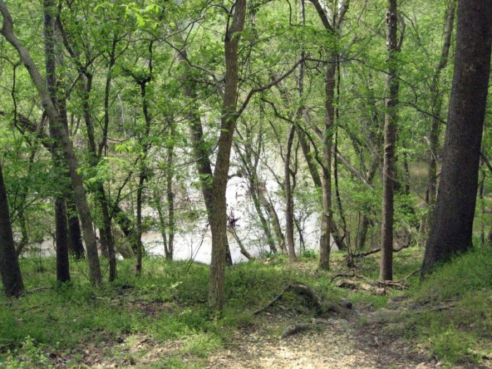 Section C of Billy Goat Trail takes you through serene wooded paths...