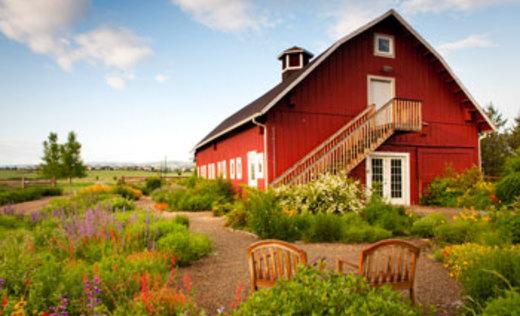 9.) Denver Botanic Gardens Chatfield.