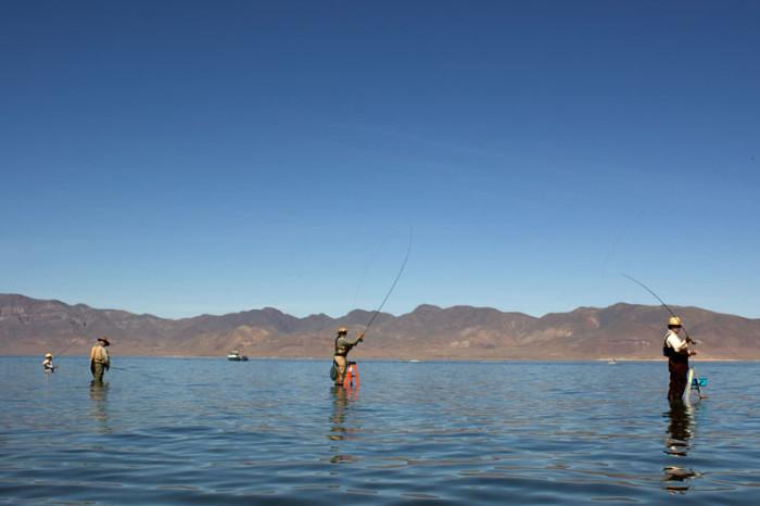 12. Go fishing at Pyramid Lake.