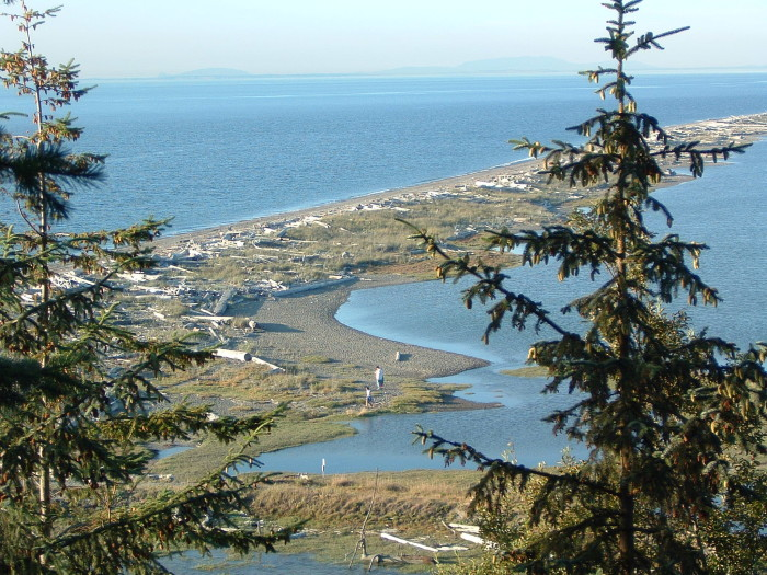 5. Whenever you feel like going for a walk on the beach, you can head out on the longest sand spit in the country, known as Dungeness Spit.