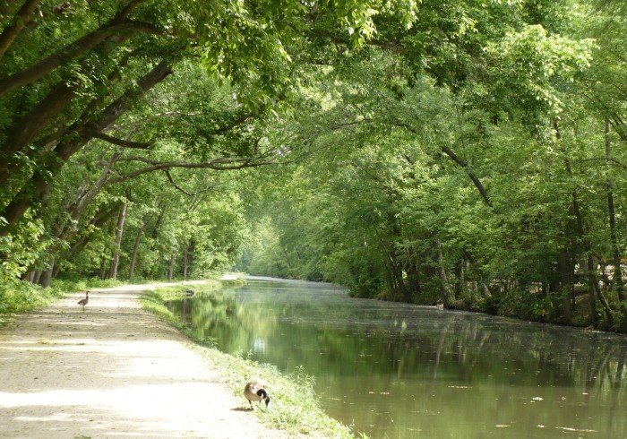 19. C & O Canal