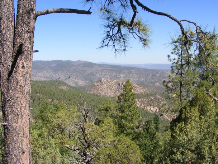 5. Get away from it all in one of New Mexico's wilderness areas.