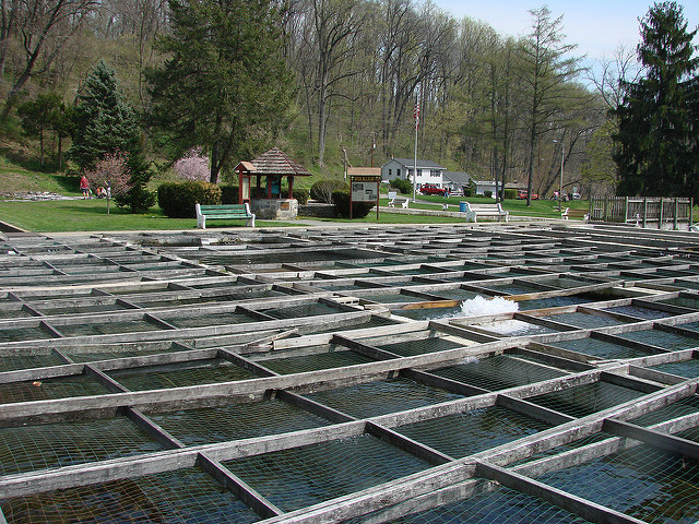 4. Lil Lehigh Trout Hatchery and Museum of Indian Culture, Allentown