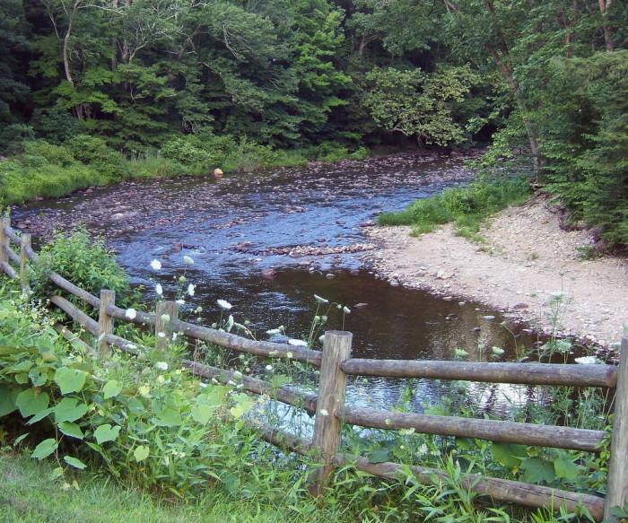 8. Salmon River