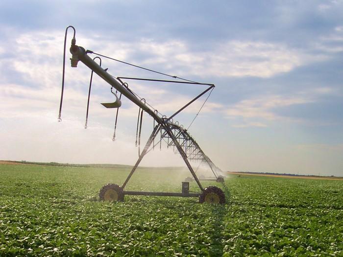 9. Irrigation