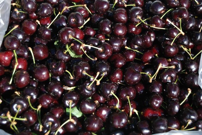 4. Flathead Cherries