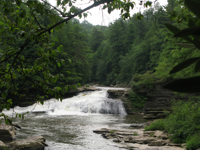 9. Swallow Falls State Park