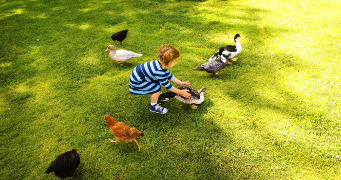 3. Farm life is great for the kids.