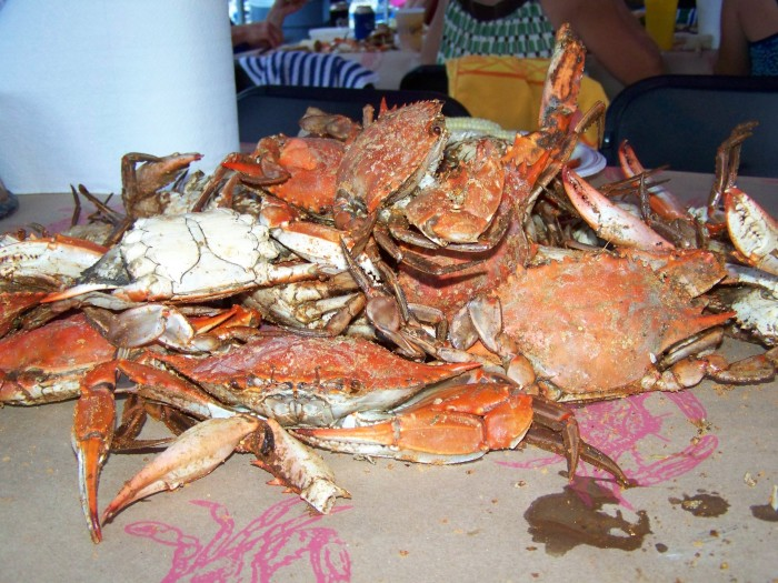 8. CRAB FEAST FOR DINNER!!!