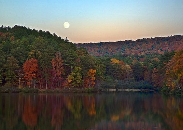 3. Unlike many other states, ALL four seasons are experienced in Alabama.
