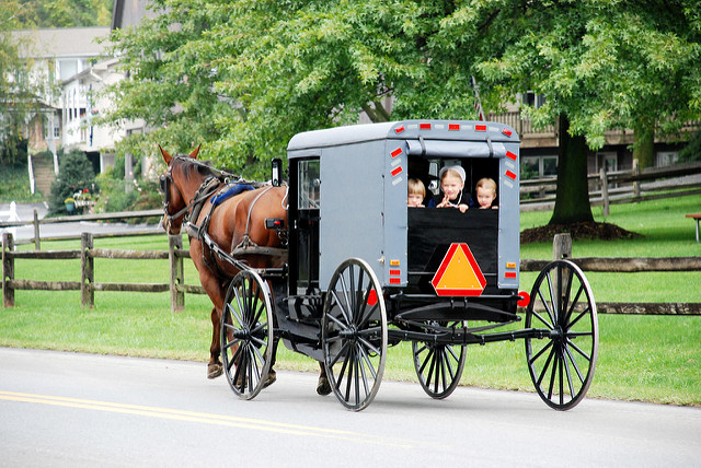 3. And maybe get stuck behind an Amish horse and buggy.