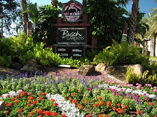 3. Find your inner thrill-seeker at Busch Gardens