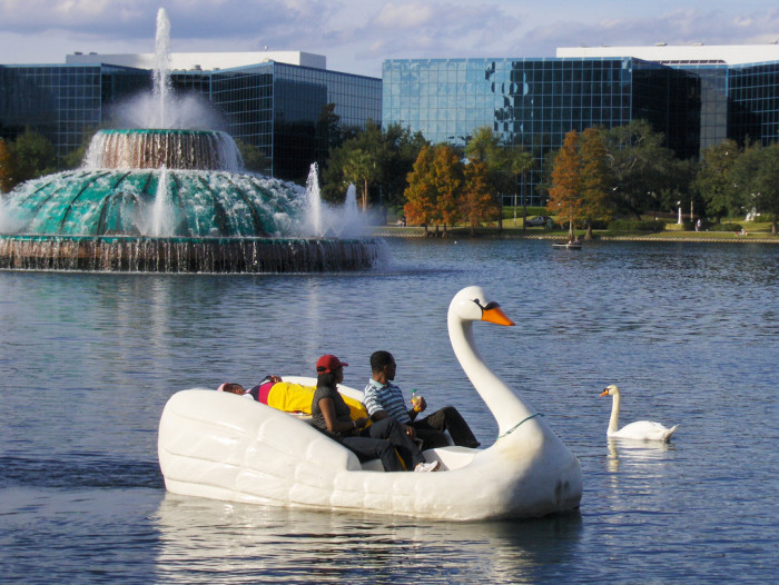 5. Swans, both real and imitation, are a hallmark of this park in Central Florida.