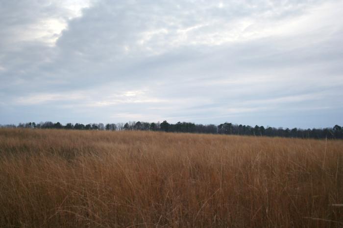 6. Civil War battlefields remind us of tragic history and loss.