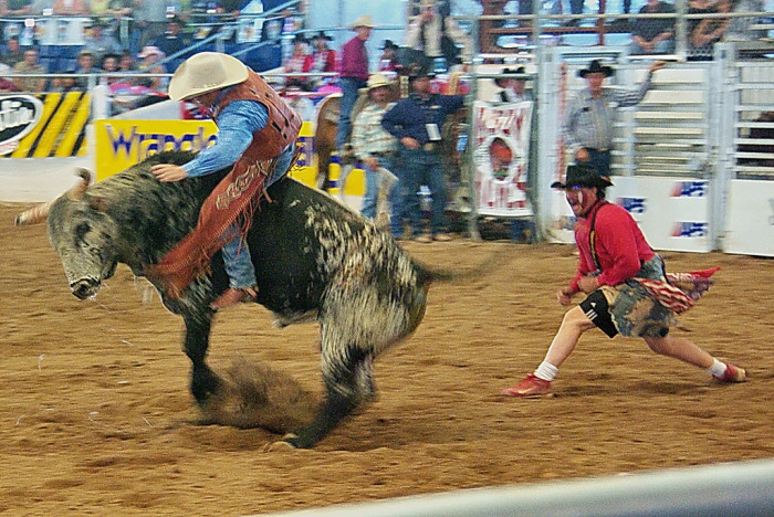12. Check out a rodeo for some real western fun. You're in luck, too, because we have at least a couple dozen coming up in the next few months.
