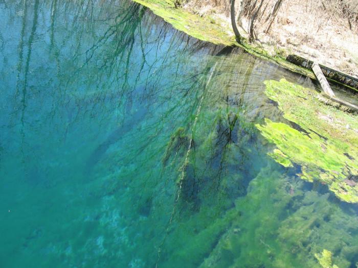6. The Castalia State Fish Hatchery Blue Hole