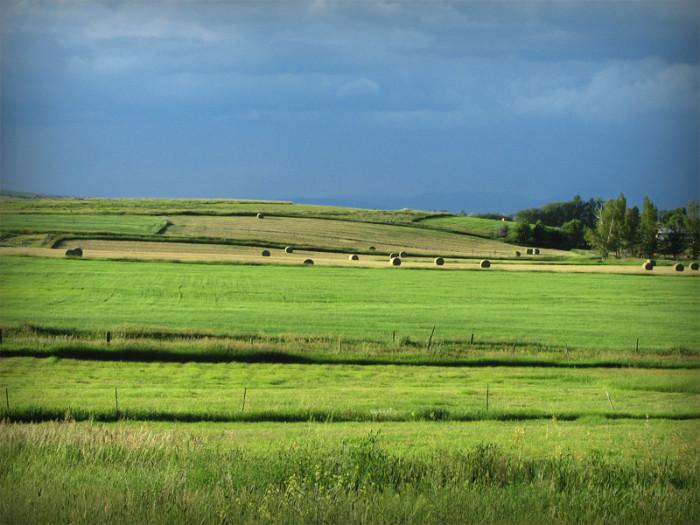 15. The beauty of hay season.