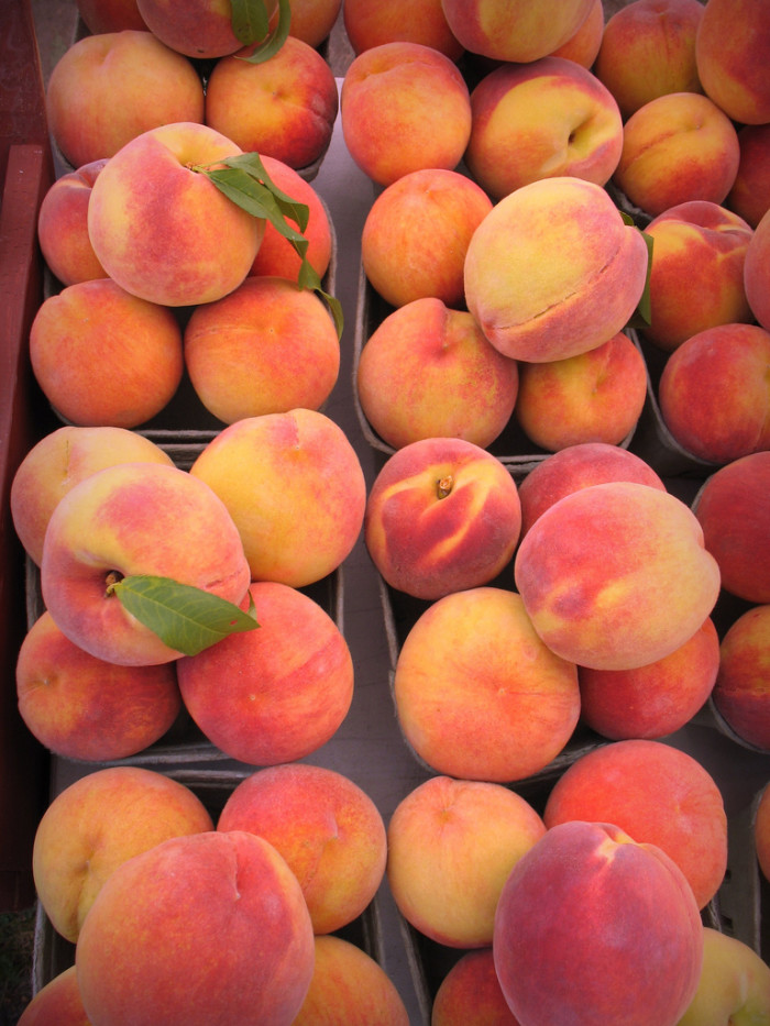 "5. ""I have no idea when the peaches will be at their ripest."""