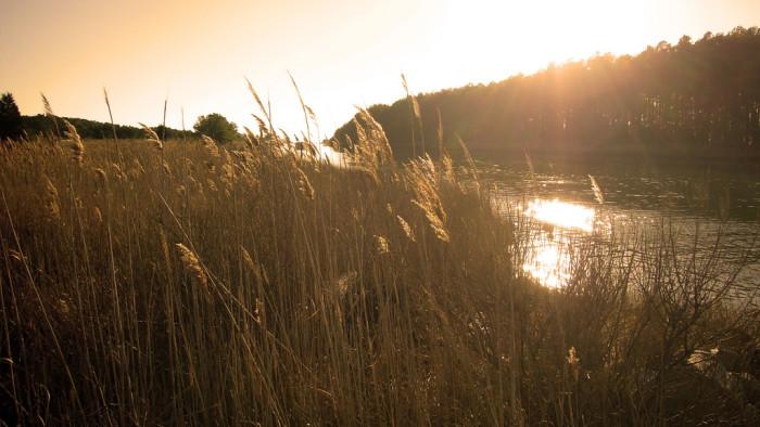 8. Jane's Island State Park, Crisfield