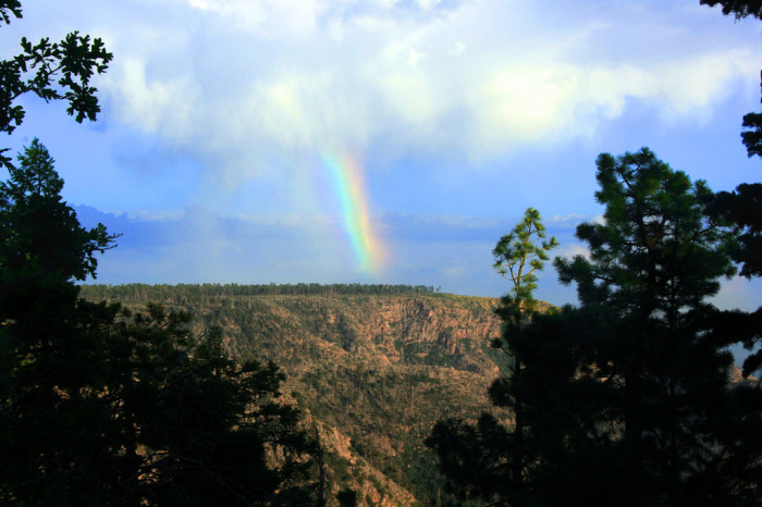 9. Spend a day (or two) hiking trails on the Mogollon Rim.