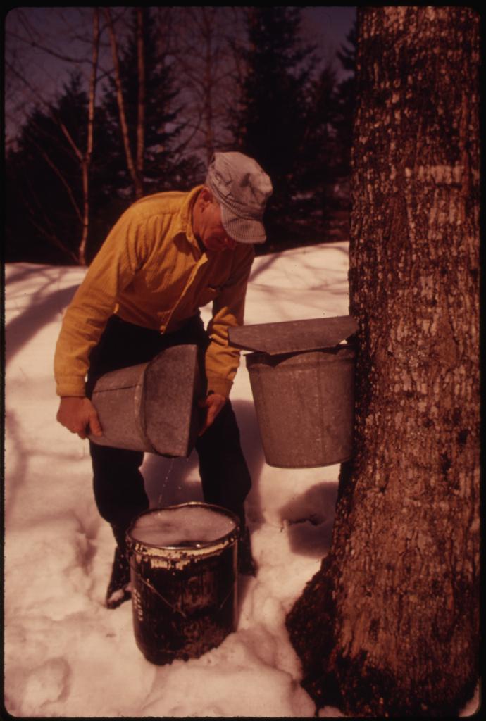10.  Dairy Farmer in 1974