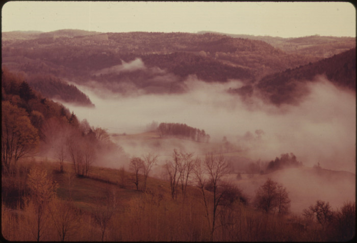 6.  Early Morning Mist