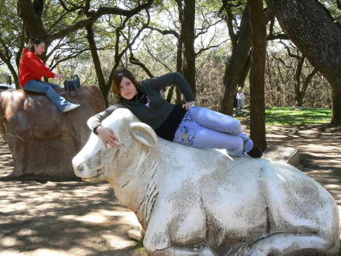 5. Arboretum stone cows that are a funny photo-op for kids and adults of all ages.