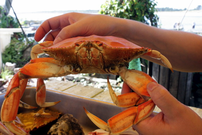 3. While you're at it, head to Jetty Fishery on Nehalem Bay to catch your own Dungeness Crab dinner.