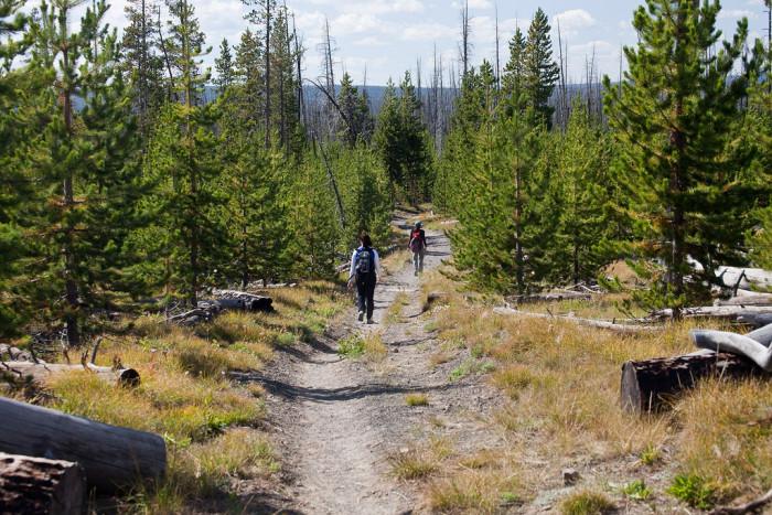 1. Heart Lake Trail