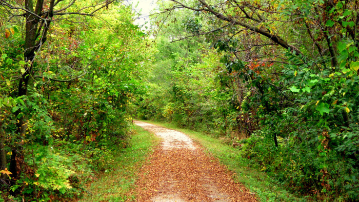 3. Go hiking on the Wabash Trace Nature Trail in western Iowa.