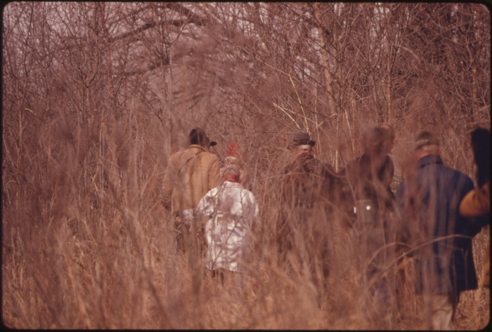 1. Members of the National Audubon Society make their way through the brush at the Rowe Bird Sanctuary, March 1975.