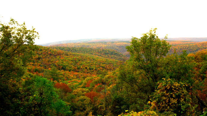3. Where is the best place to go for fall foliage?