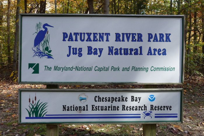 Jug Bay's mission is to increase awareness and appreciation of estuarine conservation.