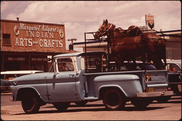 19. Just a couple of horses being transported in this classic truck in Moenkopi.