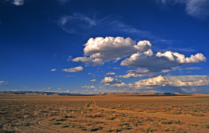17. Some of the best parts of our state are the untouched expanses of land.