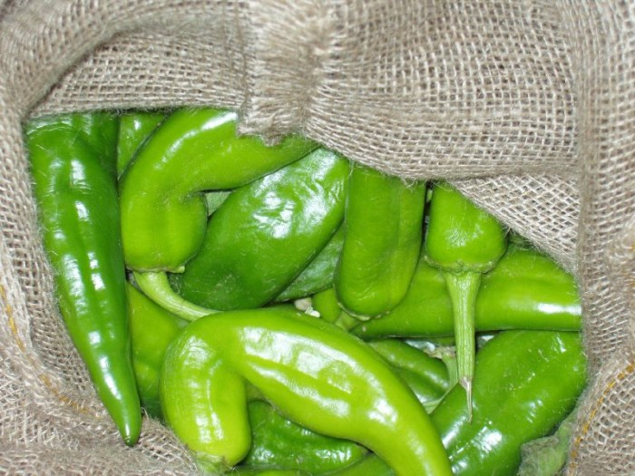 3. Chile pepper production.