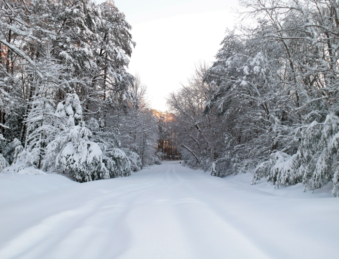 14. A heavy blanket of  snow covers this back road in Sussex County.