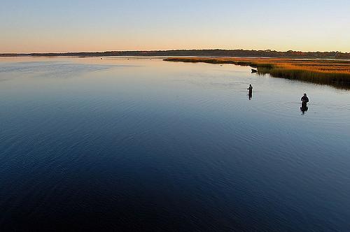 10. Warren River