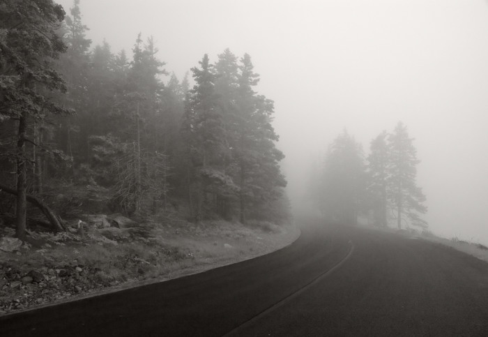 2. The landscape of Maine offers the perfect inspiration. From foggy, mystical Acadia roads...