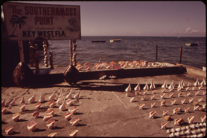 22. Souvenir Seashells for Sale at the Southernmost Point of the United States.