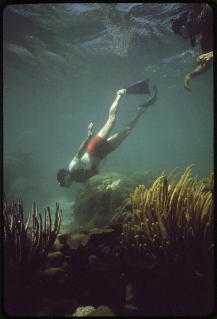21. Snorkeler Observes the Coral and Sea Life at the John Pennekamp Coral Reef State Park near Key Largo. Water Clarity Has Noticeably Decreased in Recent Years Because of Dredging and Landfill Operations by Developers.