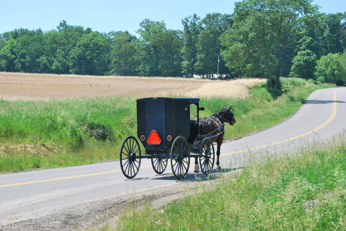 3. Ohio has the largest Amish population of any state in the nation.